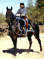Mounted Infantry Officer
