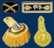 Officers Insignia